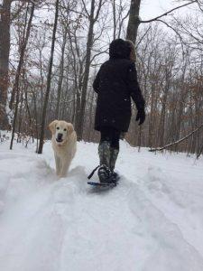 family fun county snowshoe winter pet-friendly